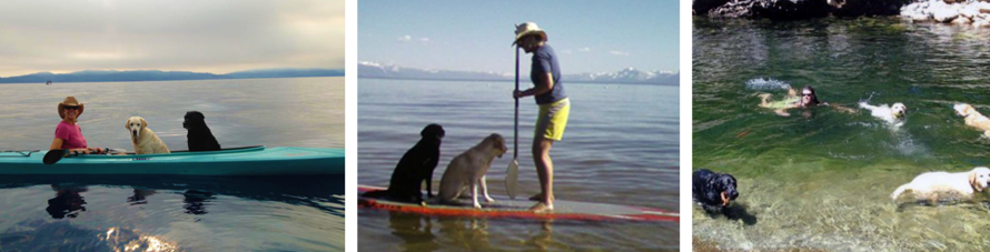 Owner and her two dogs on Tahoe